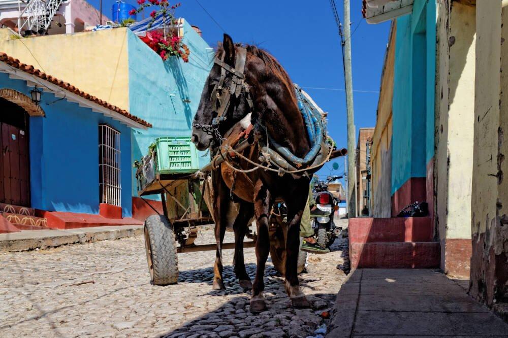 Czy można lecieć na Kubę i czy trzeba mieć test na koronawirusa?
