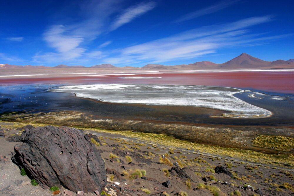 Boliwijskie salary, Patagonia i Atakama